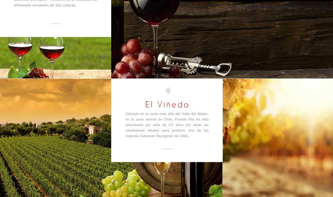 Vinos Almaviva
